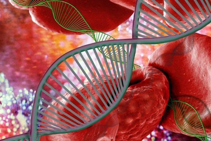 Editing del genoma: trattato il primo paziente italiano affetto da talassemia
